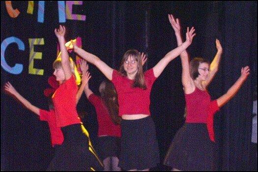 Ples v šumavských hošticích 29 2 2008